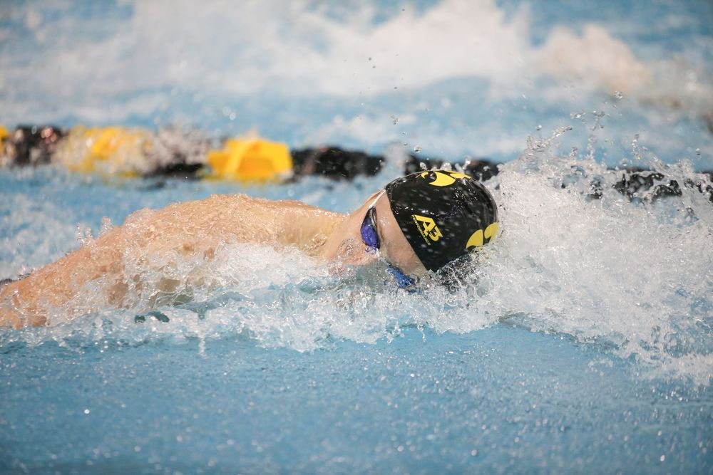 Iowa's Joe Myhre swims the 100-yard freestyle during the Iowa swimming and diving meet vs Notre Dame and Illinois on Saturday, January 11, 2020 at the Campus Recreation and Wellness Center. (Lily Smith/hawkeyesports.com)