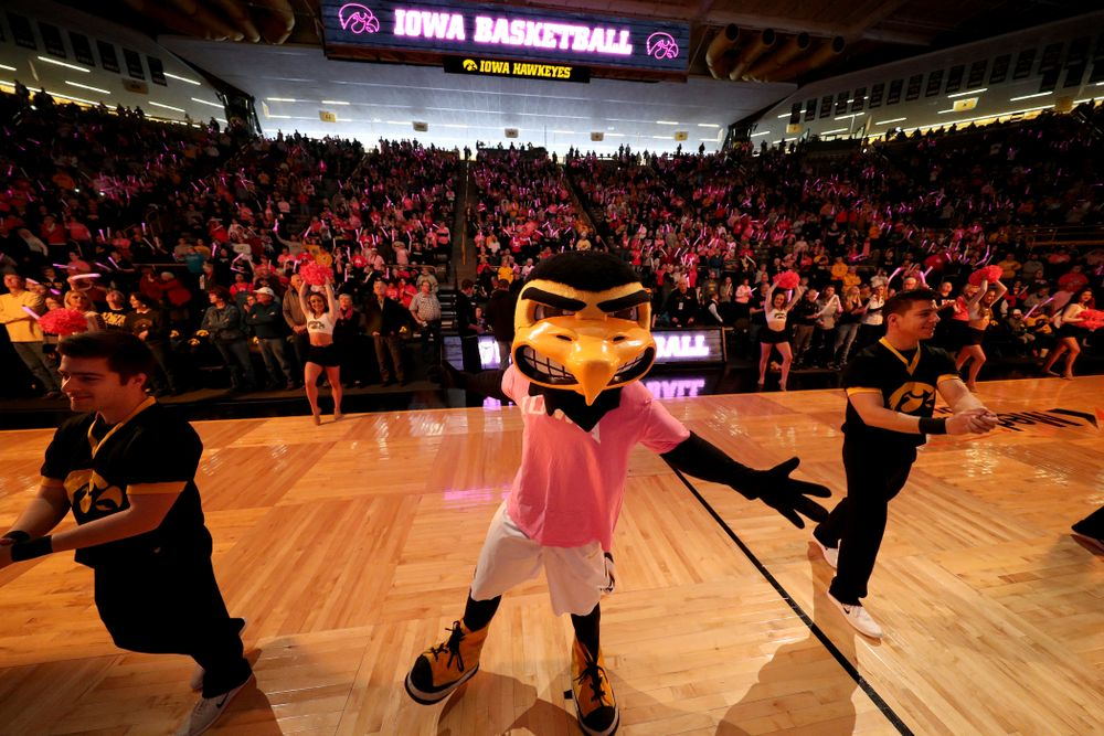 Herky the Hawk before the Iowa Hawkeyes game against the seventh ranked Maryland Terrapins Sunday, February 17, 2019 at Carver-Hawkeye Arena. (Brian Ray/hawkeyesports.com)