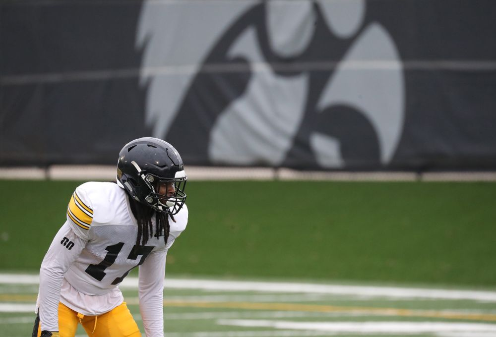Iowa Hawkeyes defensive back Devonte Young (17)