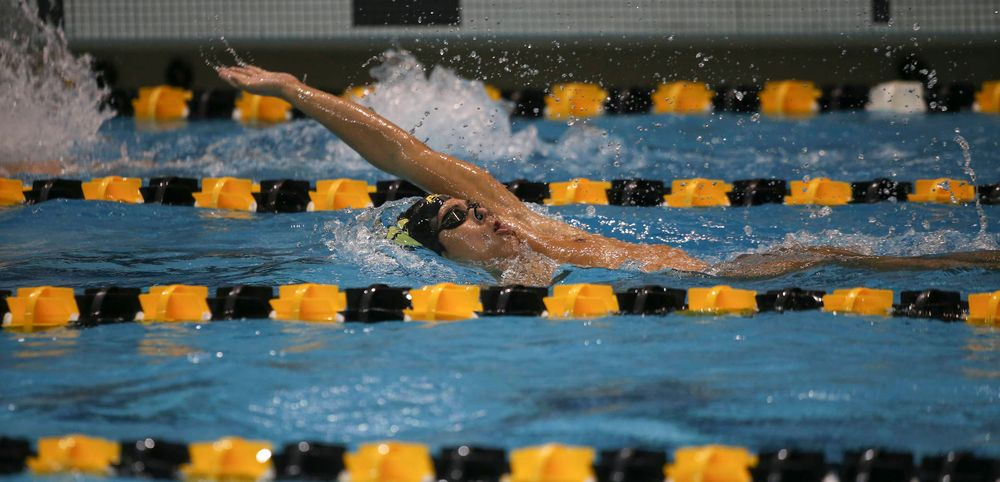 Iowa's Preston Planells swims the 200-yard backstroke during the Iowa swimming and diving meet vs Notre Dame and Illinois on Saturday, January 11, 2020 at the Campus Recreation and Wellness Center. (Lily Smith/hawkeyesports.com)