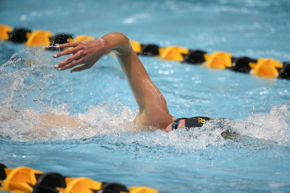Iowa's Alyssa Fluit swims the 500-yard freestyle during the Iowa swimming and diving meet vs Notre Dame and Illinois on Saturday, January 11, 2020 at the Campus Recreation and Wellness Center. (Lily Smith/hawkeyesports.com)