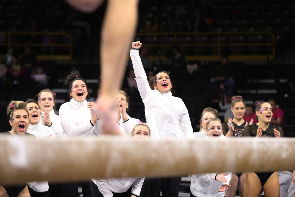 Iowa's Gina Leal cheers on Mackenzie Vance as she competes on the beam during their meet against the Minnesota Golden Gophers Saturday, January 19, 2019 at Carver-Hawkeye Arena. (Brian Ray/hawkeyesports.com)