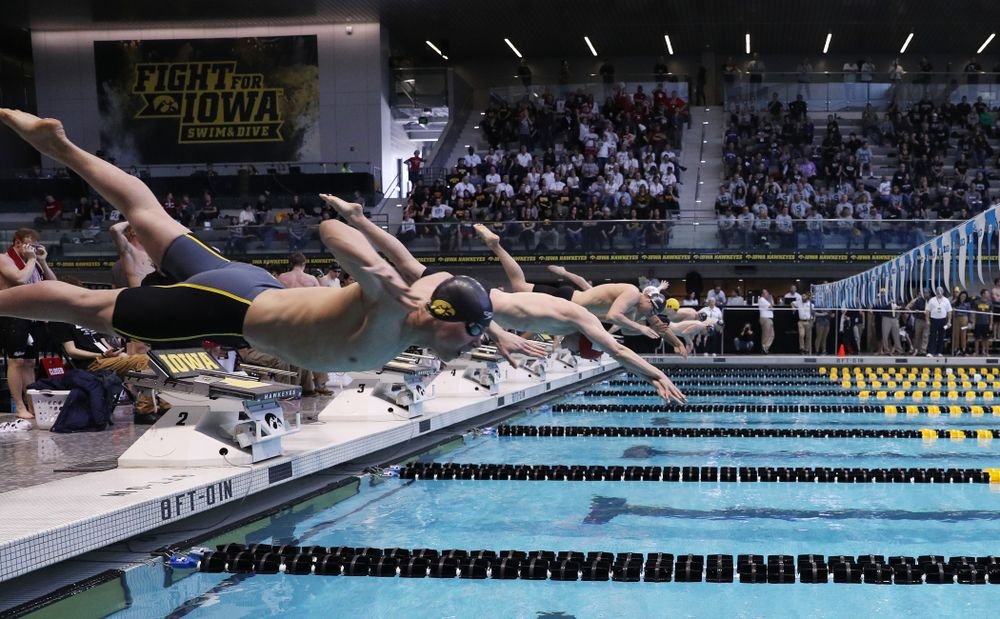 Iowa's Mateusz Arndt competes in the 200-yard freestyle on the third day at the 2019 Big Ten Swimming and Diving Championships Thursday, February 28, 2019 at the Campus Wellness and Recreation Center. (Brian Ray/hawkeyesports.com)