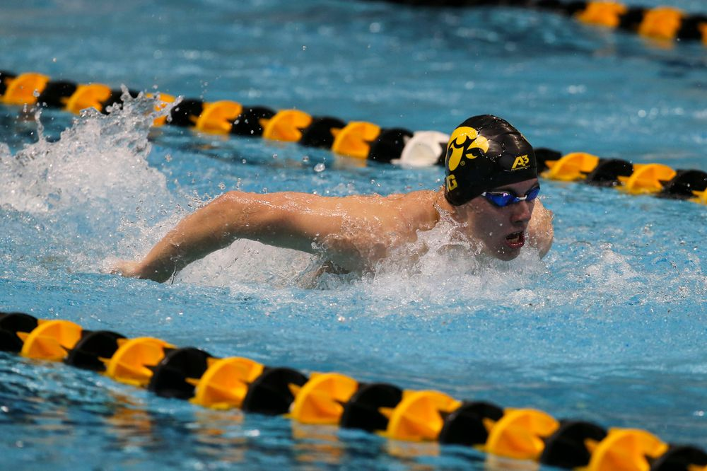 Iowa's Dolan Craine during Iowa swim and dive vs Minnesota on Saturday, October 26, 2019 at the Campus Wellness and Recreation Center. (Lily Smith/hawkeyesports.com)
