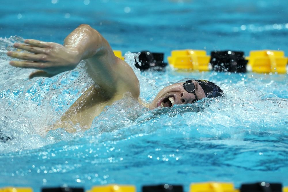 Iowa's Mateusz Arndt swims the 500 yard freestyle Thursday, November 15, 2018 during the 2018 Hawkeye Invitational at the Campus Recreation and Wellness Center. (Brian Ray/hawkeyesports.com)