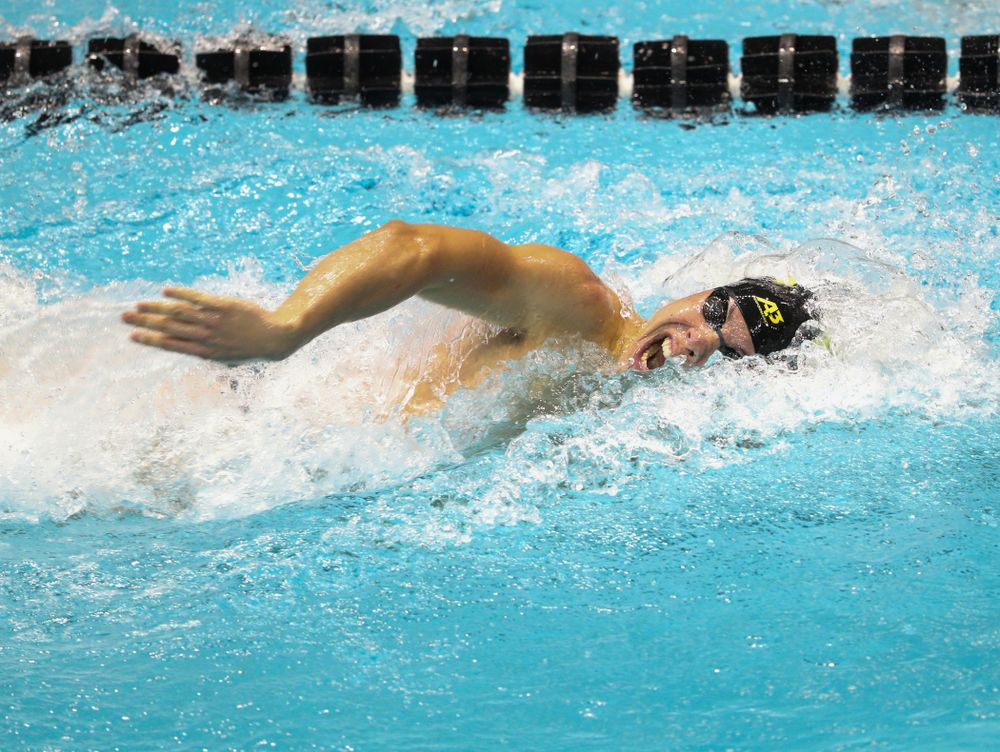 IowaÕs Mateusz Arndt competes in the 200 yard freestyle against Notre Dame and Illinois Saturday, January 11, 2020 at the Campus Recreation and Wellness Center.  (Brian Ray/hawkeyesports.com)