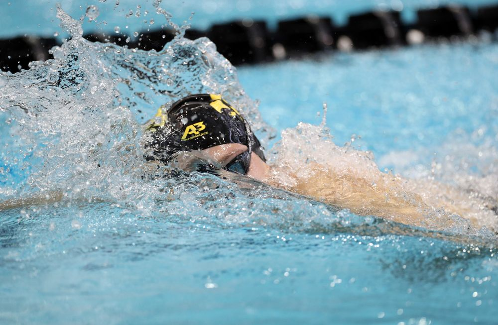 IowaÕs Emilia Sansome swims the 500 yard freestyle against the Michigan Wolverines Friday, November 1, 2019 at the Campus Recreation and Wellness Center. (Brian Ray/hawkeyesports.com)