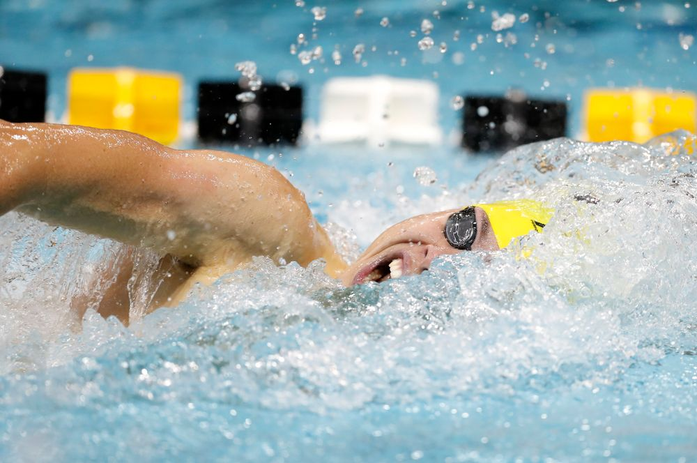 Matt Arndt swims the 200 yard freestyle during the Black and Gold Intrasquad Saturday, September 29, 2018 at the Campus Recreation and Wellness Center. (Brian Ray/hawkeyesports.com)