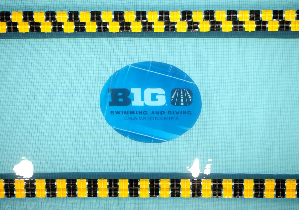 The 2020 Women's Big Ten Swimming and Diving Championships at the Campus Recreation and Wellness Center in Iowa City on Thursday, February 20, 2020. (Stephen Mally/hawkeyesports.com)