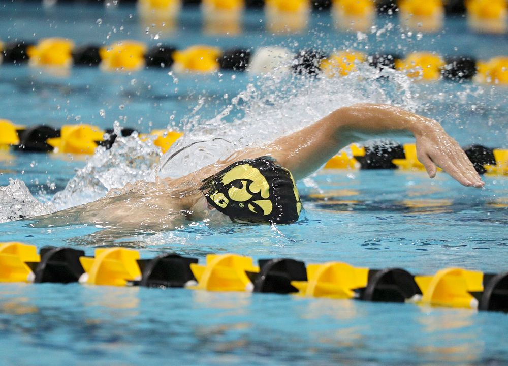 Iowa's Daniel Swanepoel swims his section of the men's 200-yard freestyle relay event during their meet against Michigan State at the Campus Recreation and Wellness Center in Iowa City on Thursday, Oct 3, 2019. (Stephen Mally/hawkeyesports.com)