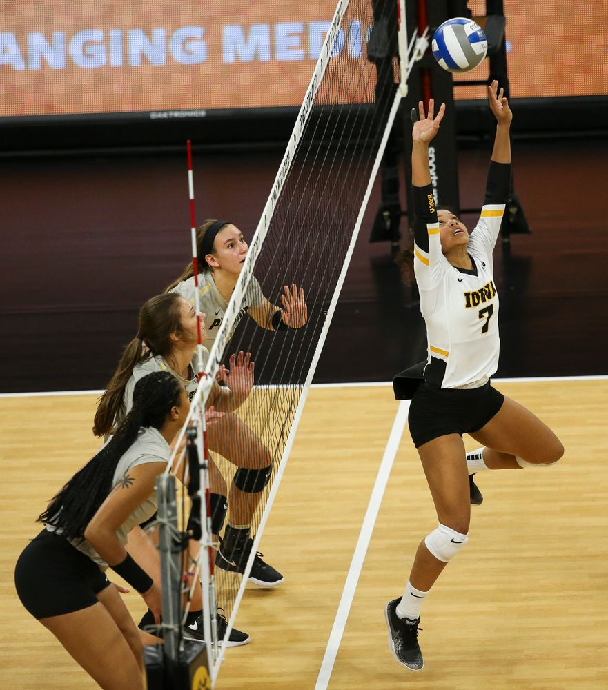 Iowa Hawkeyes setter Brie Orr (7) sets the ball during a game against Purdue at Carver-Hawkeye Arena on October 13, 2018. (Tork Mason/hawkeyesports.com)