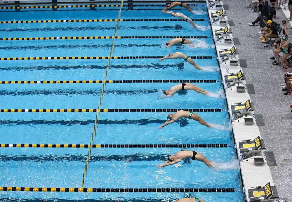 Iowa's Preston Planells, Anze Fers Erzen, John Colin, and Ryan Purdy swim the men's 100-yard backstroke event during their meet against Michigan State and Northern Iowa at the Campus Recreation and Wellness Center in Iowa City on Friday, Oct 4, 2019. (Stephen Mally/hawkeyesports.com)