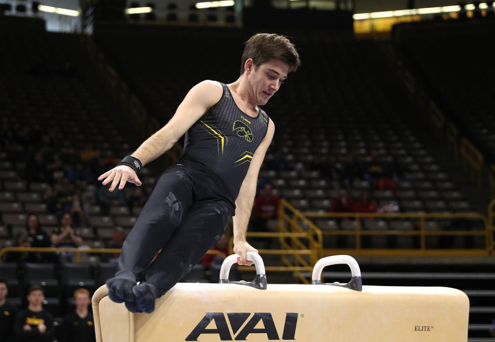 Iowa's Kevin Johnson competes on the Pommel Horse against Oklahoma Saturday, February 9, 2019 at Carver-Hawkeye Arena. (Brian Ray/hawkeyesports.com)