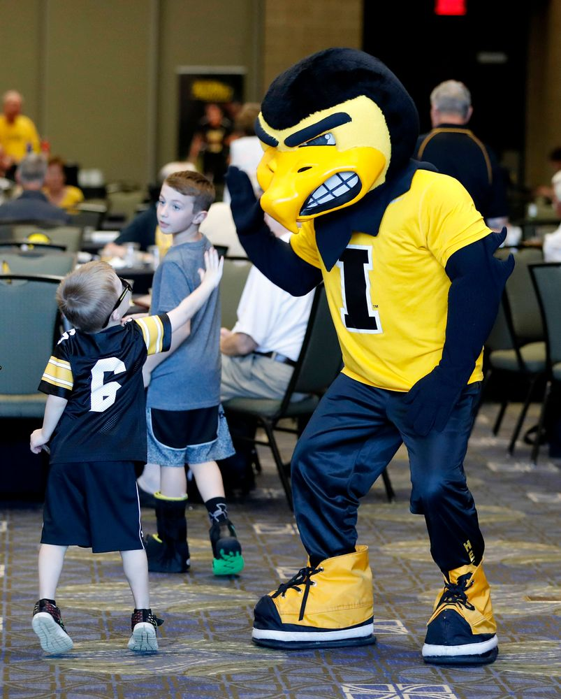 Herky the Hawk -- Hawkeye Fan Event at the Quad-Cities Waterfront Convention Center in Bettendorf, Iowa, on May 15, 2019.