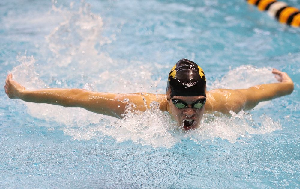 Iowa's Matjaz Rozman competes in the 200-yard butterfly during the third day of the Hawkeye Invitational at the Campus Recreation and Wellness Center on November 17, 2018. (Tork Mason/hawkeyesports.com)