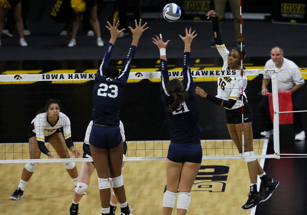 Iowa Hawkeyes outside hitter Taylor Louis (16) spikes the ball during a match against Penn State at Carver-Hawkeye Arena on November 3, 2018. (Tork Mason/hawkeyesports.com)