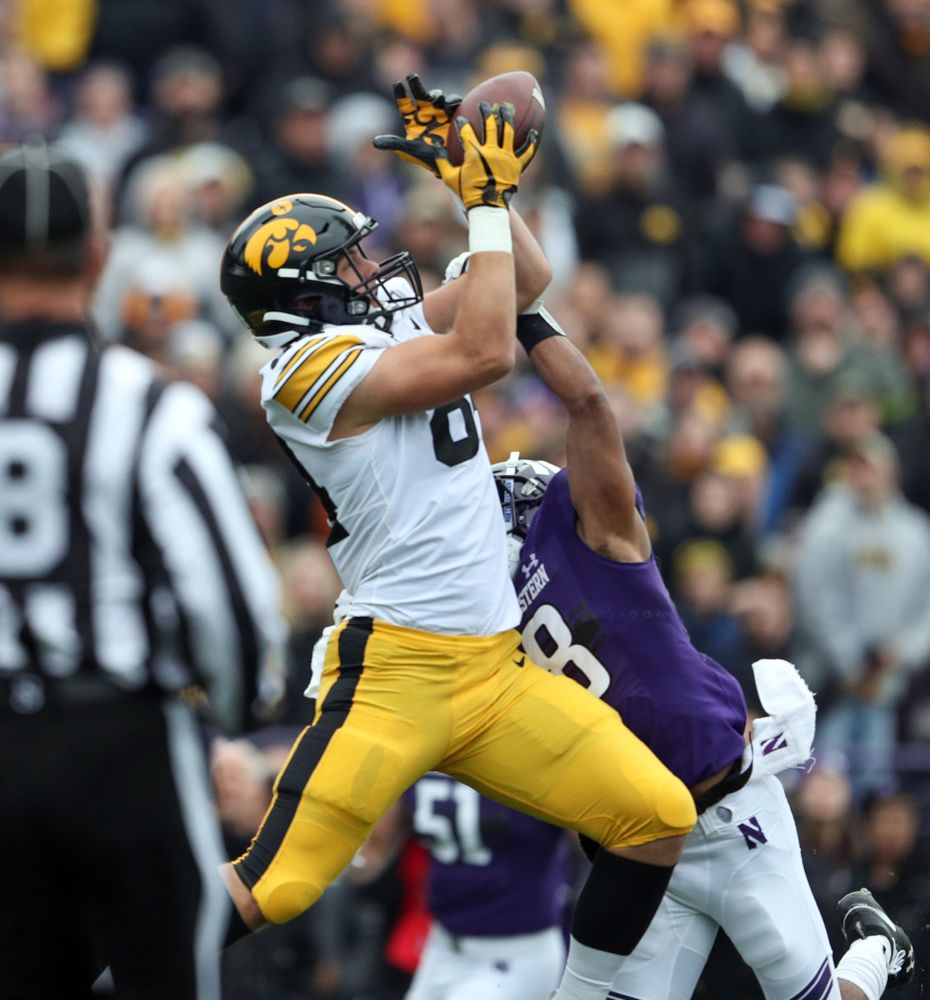 Iowa Hawkeyes tight end Sam LaPorta (84) against the Northwestern Wildcats Saturday, October 26, 2019 at Ryan Field in Evanston, Ill. (Brian Ray/hawkeyesports.com)