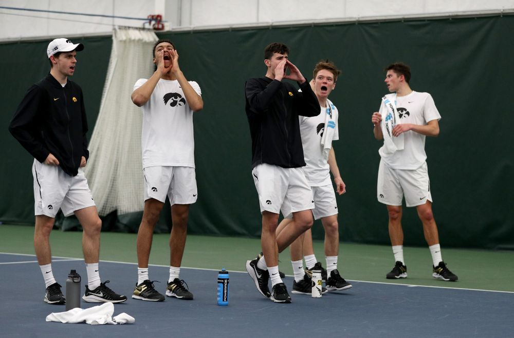 The Iowa Hawkeyes cheer on Will Davies against Cornell Sunday, March 8, 2020 at the Hawkeye Tennis and Recreation Center. (Brian Ray/hawkeyesports.com)