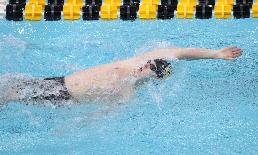 Iowa's Forrest White competes in the 200-yard backstroke during the 2019 Big Ten Men's Swimming and Diving Championships Saturday, March 2, 2019 at the Campus Wellness and Recreation Center. (Brian Ray/hawkeyesports.com)