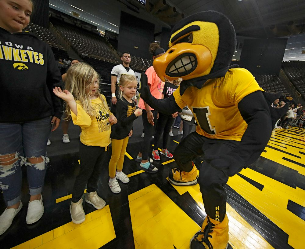 Herky gets a high-five from a young fan before the match at Carver-Hawkeye Arena in Iowa City on Sunday, Oct 20, 2019. (Stephen Mally/hawkeyesports.com)
