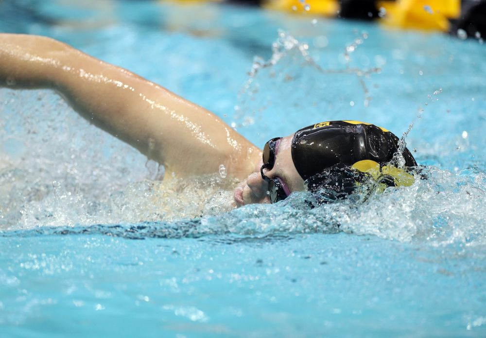 IowaÕs Alley Thomas swims the 1,000 yard freestyle agains the Michigan Wolverines Friday, November 1, 2019 at the Campus Recreation and Wellness Center. (Brian Ray/hawkeyesports.com)