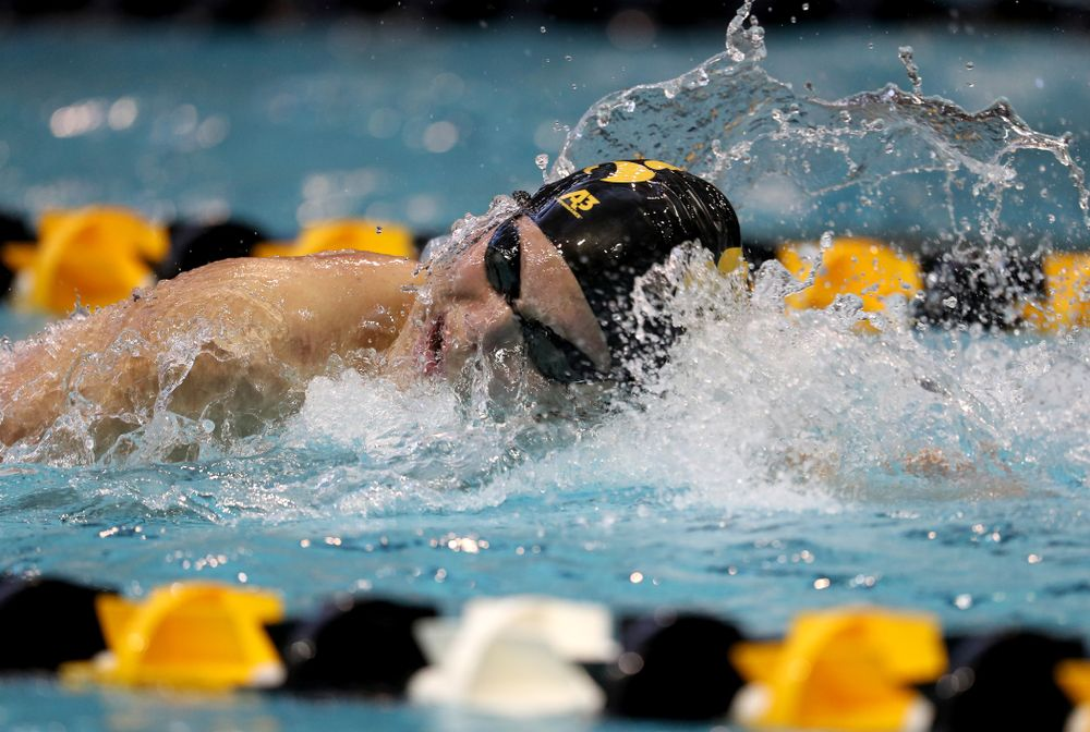 Iowa's Forrest White swims the 200 yard freestyle during a double dual against Wisconsin and Northwestern Saturday, January 19, 2019 at the Campus Recreation and Wellness Center. (Brian Ray/hawkeyesports.com)