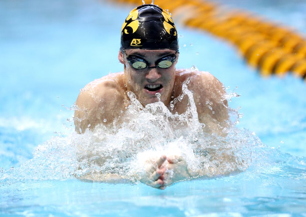 Iowa's Daniel Swanepoel competes in the 100-yard breaststroke on the third day at the 2019 Big Ten Swimming and Diving Championships Thursday, February 28, 2019 at the Campus Wellness and Recreation Center. (Brian Ray/hawkeyesports.com)