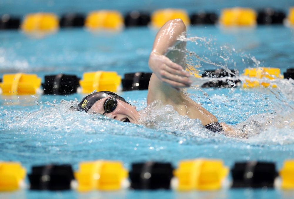 IowaÕs Anna Brooker swims the 1,000 yard freestyle agains the Michigan Wolverines Friday, November 1, 2019 at the Campus Recreation and Wellness Center. (Brian Ray/hawkeyesports.com)