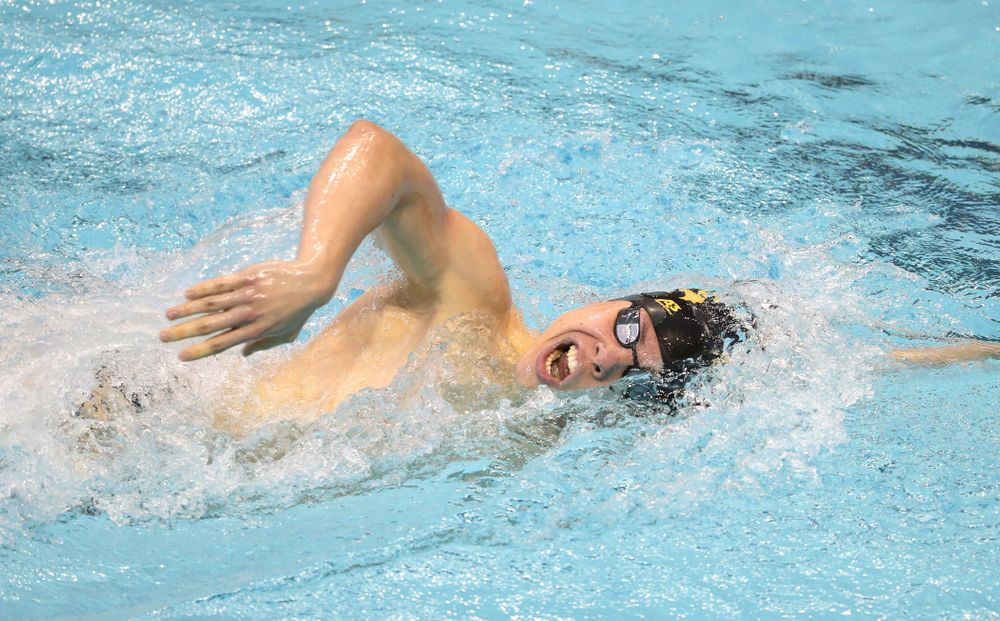 Iowa's Mateusz Arndt swims the 1000 yard freestyle during a double dual against Wisconsin and Northwestern Saturday, January 19, 2019 at the Campus Recreation and Wellness Center. (Brian Ray/hawkeyesports.com)