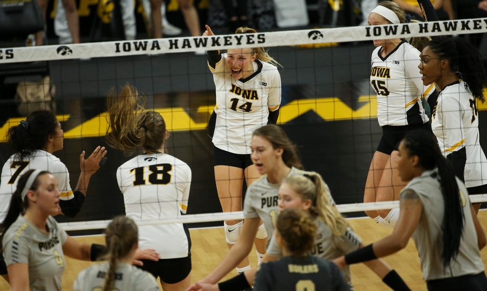 Iowa Hawkeyes outside hitter Cali Hoye (14) reacts after winning a point during a game against Purdue at Carver-Hawkeye Arena on October 13, 2018. (Tork Mason/hawkeyesports.com)