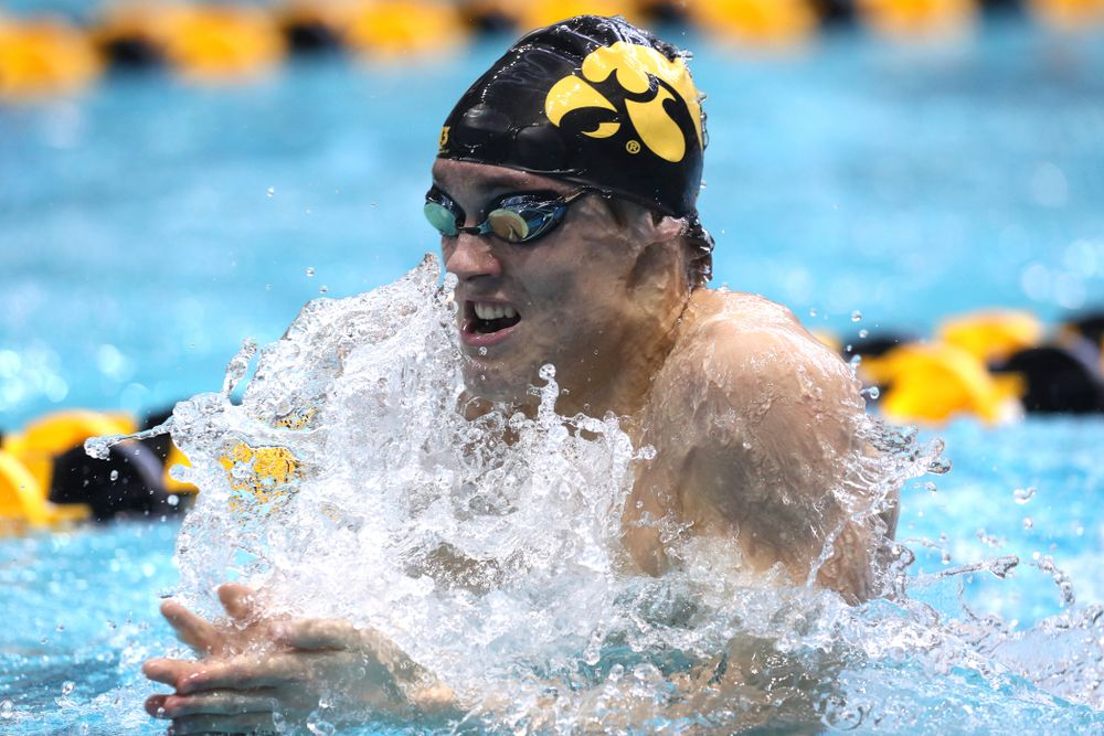 Iowa's Daniel Swanepoel competes in the 200-yard breaststroke during the 2019 Big Ten Men's Swimming and Diving Championships Saturday, March 2, 2019 at the Campus Wellness and Recreation Center. (Brian Ray/hawkeyesports.com)