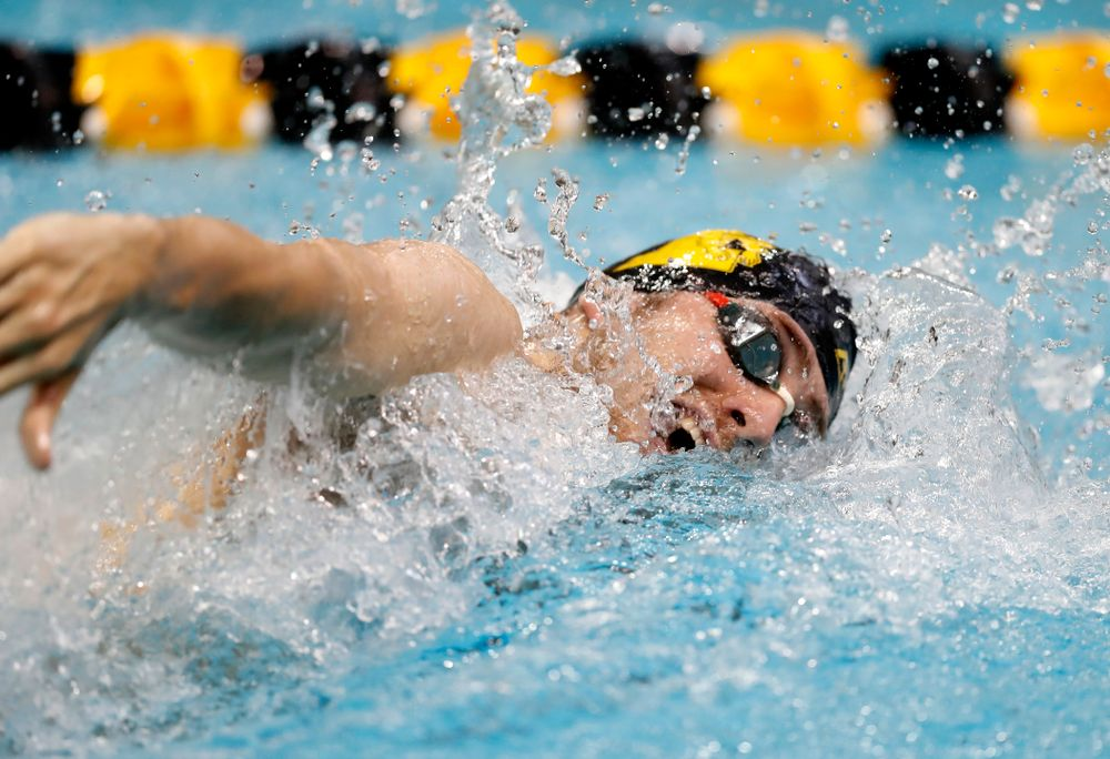 Jack Smith swims the 100 yard freestyle during the Black and Gold Intrasquad Saturday, September 29, 2018 at the Campus Recreation and Wellness Center. (Brian Ray/hawkeyesports.com)