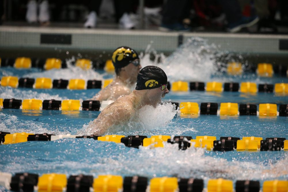 Iowa's Tanner Nelson at the 100-yard breaststroke race  Friday, March 1, 2019 at the Campus Recreation and Wellness Center. (Lily Smith/hawkeyesports.com)