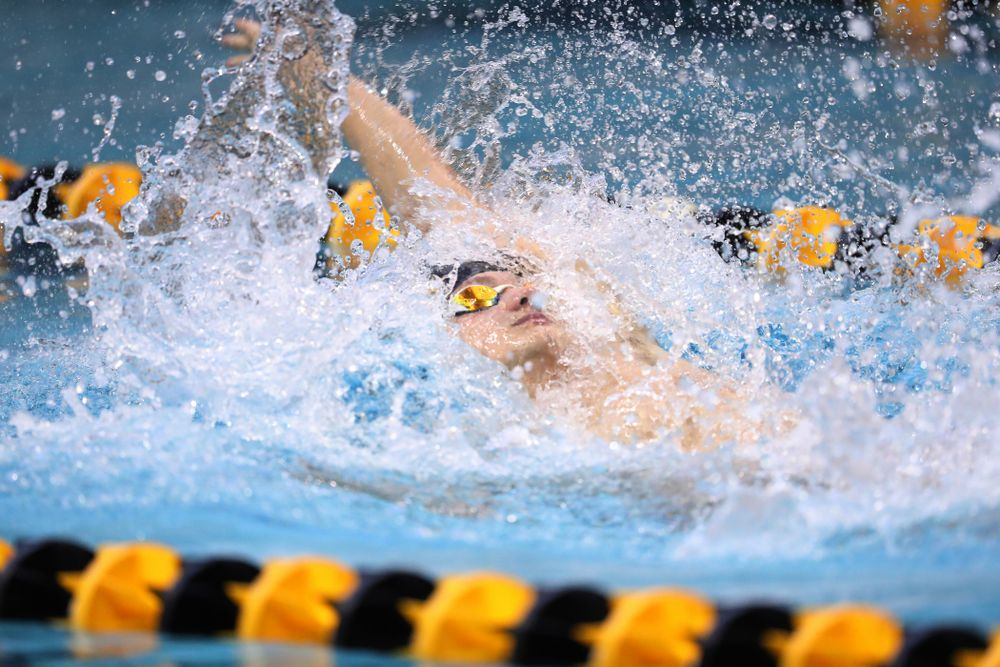 Iowa's Anze Fers Erzen swims the backstroke leg of the 200 yard medley relay during a double dual against Wisconsin and Northwestern Saturday, January 19, 2019 at the Campus Recreation and Wellness Center. (Brian Ray/hawkeyesports.com)