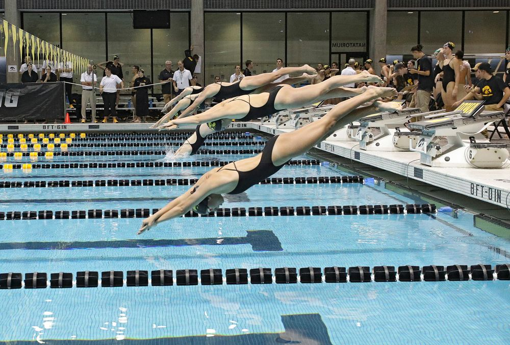 Iowa swimmers dive into the pool for the 100-yard individual medley event during their meet against Michigan State at the Campus Recreation and Wellness Center in Iowa City on Thursday, Oct 3, 2019. (Stephen Mally/hawkeyesports.com)