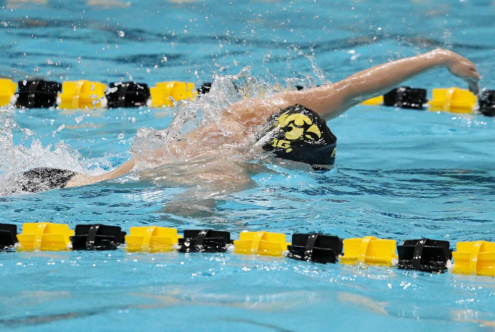 Iowa's Jackson Allmon swims his section of the men's 200-yard freestyle relay event during their meet against Michigan State at the Campus Recreation and Wellness Center in Iowa City on Thursday, Oct 3, 2019. (Stephen Mally/hawkeyesports.com)