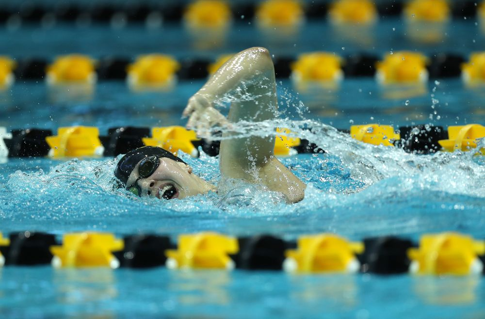 Iowa's Hannah Burvill swims the 500 Yard Freestyle Thursday, November 15, 2018 during the 2018 Hawkeye Invitational at the Campus Recreation and Wellness Center. (Brian Ray/hawkeyesports.com)