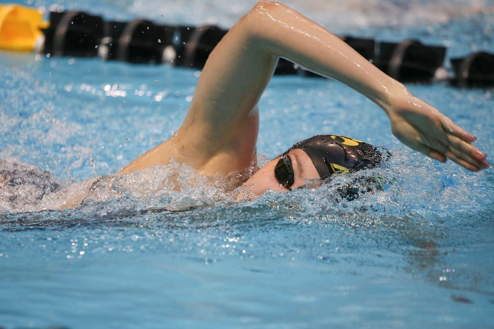 Iowa's Emilia Sansome swims the 1000-yard freestyle during the Iowa swimming and diving meet vs Notre Dame and Illinois on Saturday, January 11, 2020 at the Campus Recreation and Wellness Center. (Lily Smith/hawkeyesports.com)