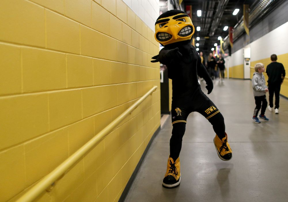 Herky the Hawk before the Iowa Hawkeyes meet against Penn State Friday, January 31, 2020 at Carver-Hawkeye Arena. (Brian Ray/hawkeyesports.com)