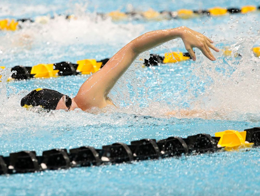 Iowa's Samantha Sauer swims the women's 50-yard freestyle event during their meet against Michigan State and Northern Iowa at the Campus Recreation and Wellness Center in Iowa City on Friday, Oct 4, 2019. (Stephen Mally/hawkeyesports.com)