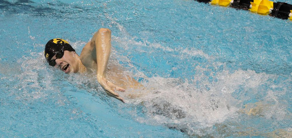 Iowa's Stjepan Fiolic competes in the 200-yard freestyle during the third day of the Hawkeye Invitational at the Campus Recreation and Wellness Center on November 16, 2018. (Tork Mason/hawkeyesports.com)
