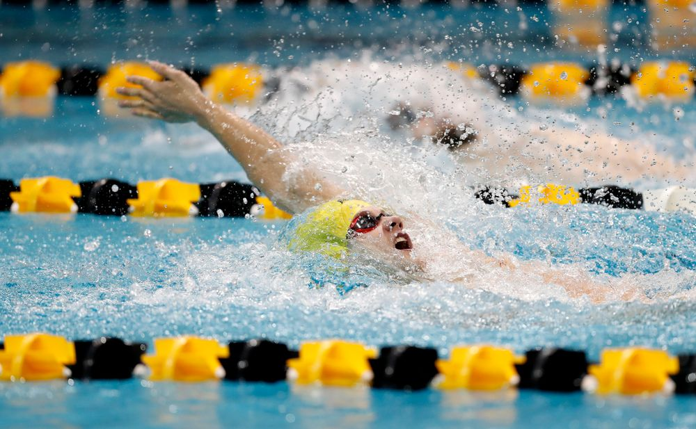 Anze Fers Erzen swims the 100 yard backstroke during the Black and Gold Intrasquad Saturday, September 29, 2018 at the Campus Recreation and Wellness Center. (Brian Ray/hawkeyesports.com)