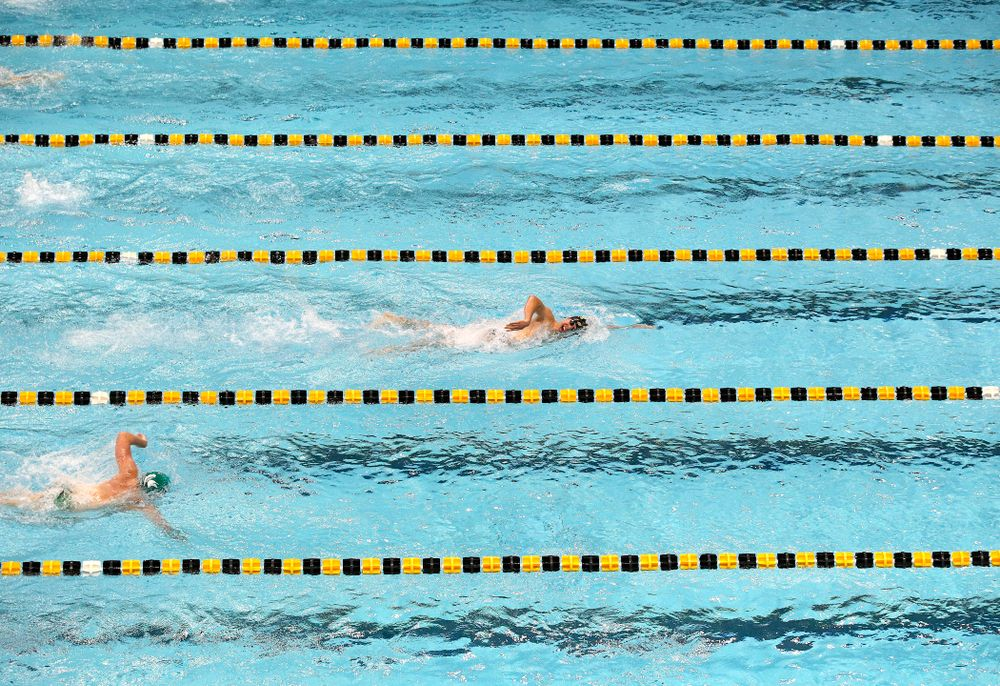 Iowa's Mateus Arndt leads the field in the men's 1000-yard freestyle event during their meet against Michigan State and Northern Iowa at the Campus Recreation and Wellness Center in Iowa City on Friday, Oct 4, 2019. (Stephen Mally/hawkeyesports.com)