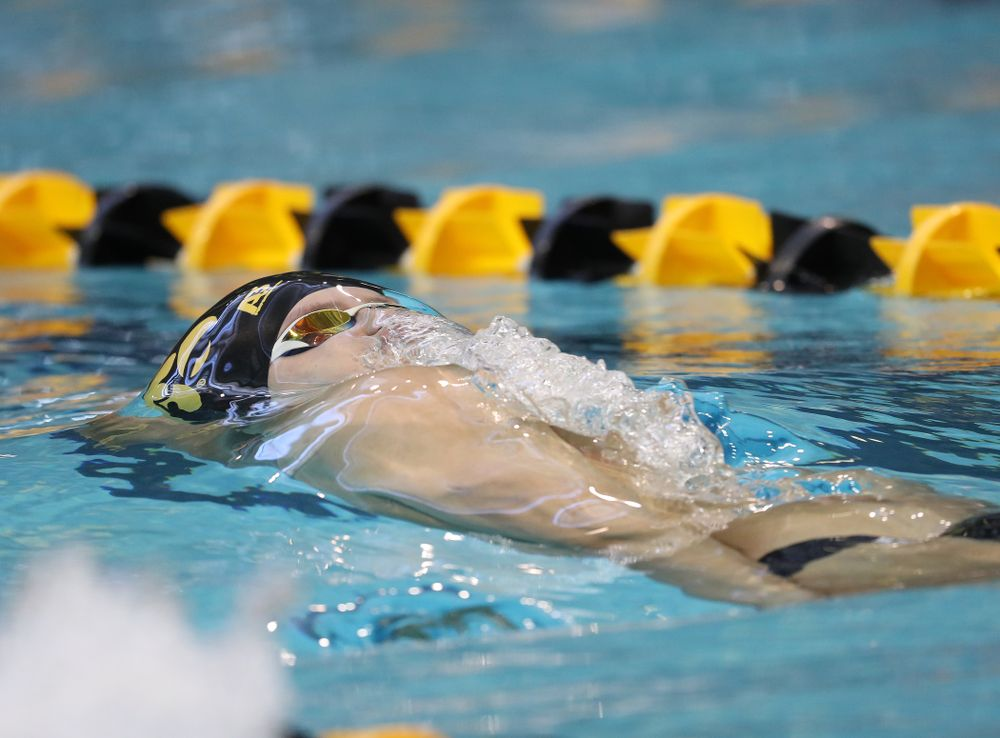 Iowa's Anze Fers Erzen swims the 100 yard backstroke during a double dual against Wisconsin and Northwestern Saturday, January 19, 2019 at the Campus Recreation and Wellness Center. (Brian Ray/hawkeyesports.com)