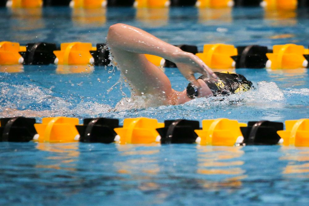Taylor Hartley during Iowa women's swimming and diving vs Rutgers on Friday, November 8, 2019 at the Campus Wellness and Recreation Center. (Lily Smith/hawkeyesports.com)