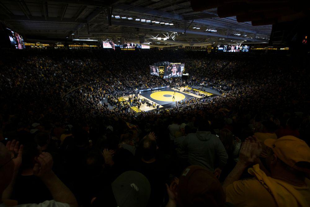 The Iowa Hawkeyes against Penn State Friday, January 31, 2020 at Carver-Hawkeye Arena. Warner won the match 4-2. (Brian Ray/hawkeyesports.com)