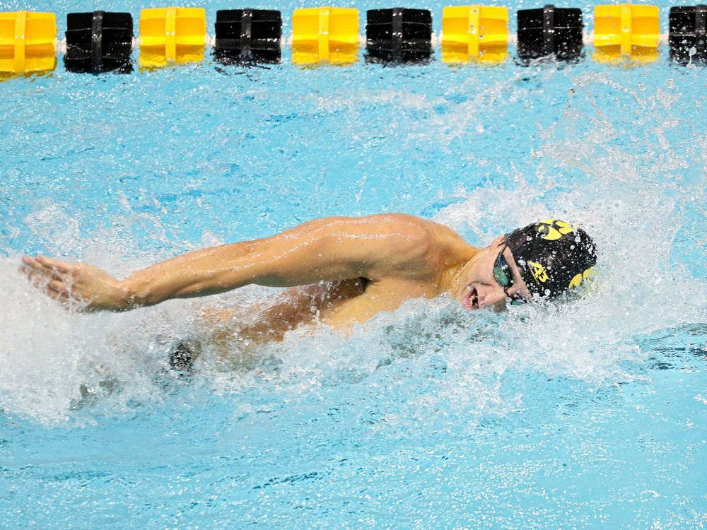 Iowa's Michael Tenney swims the men's 200-yard freestyle event during their meet against Michigan State and Northern Iowa at the Campus Recreation and Wellness Center in Iowa City on Friday, Oct 4, 2019. (Stephen Mally/hawkeyesports.com)