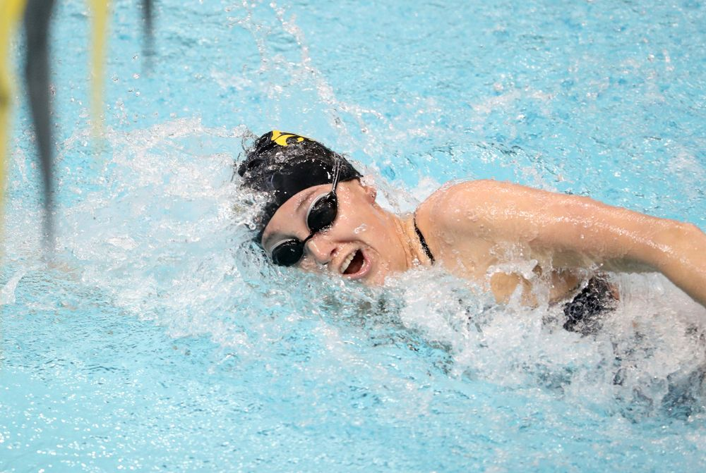 IowaÕs Samantha Sauer swims the freestyle leg of the 200 Medley Relay against Notre Dame and Illinois Saturday, January 11, 2020 at the Campus Recreation and Wellness Center.  (Brian Ray/hawkeyesports.com)
