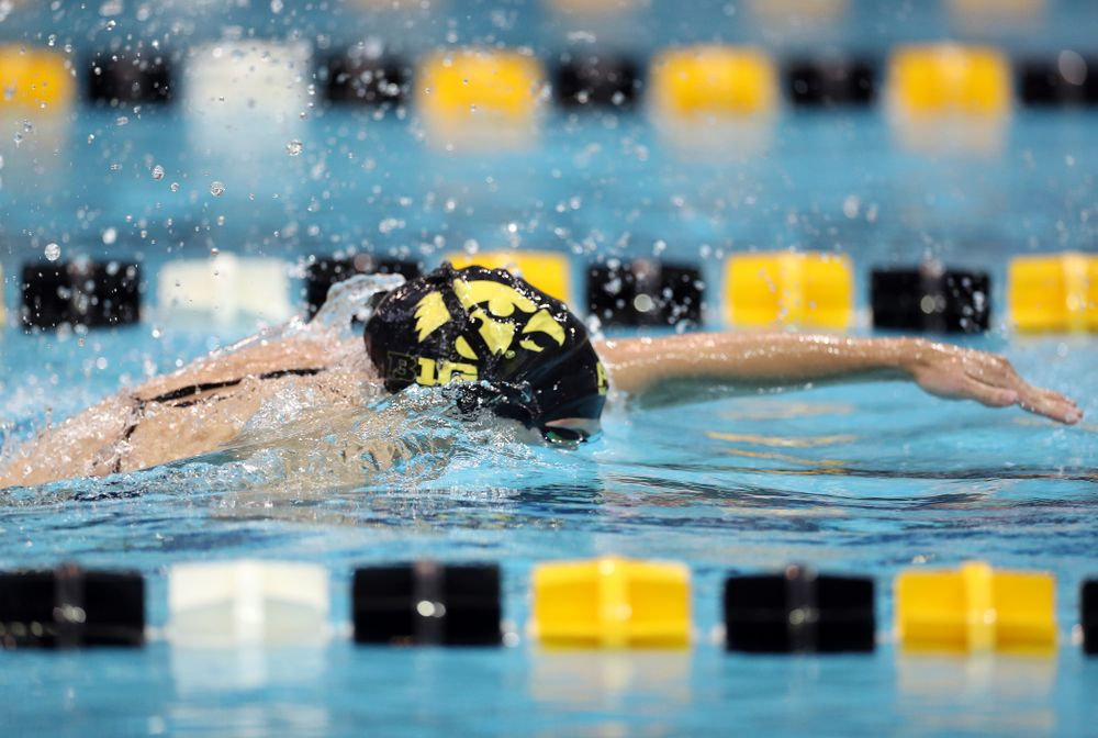 IowaÕs Meghan Hackett swims the 50 yard freestyle against the Michigan Wolverines Friday, November 1, 2019 at the Campus Recreation and Wellness Center. (Brian Ray/hawkeyesports.com)