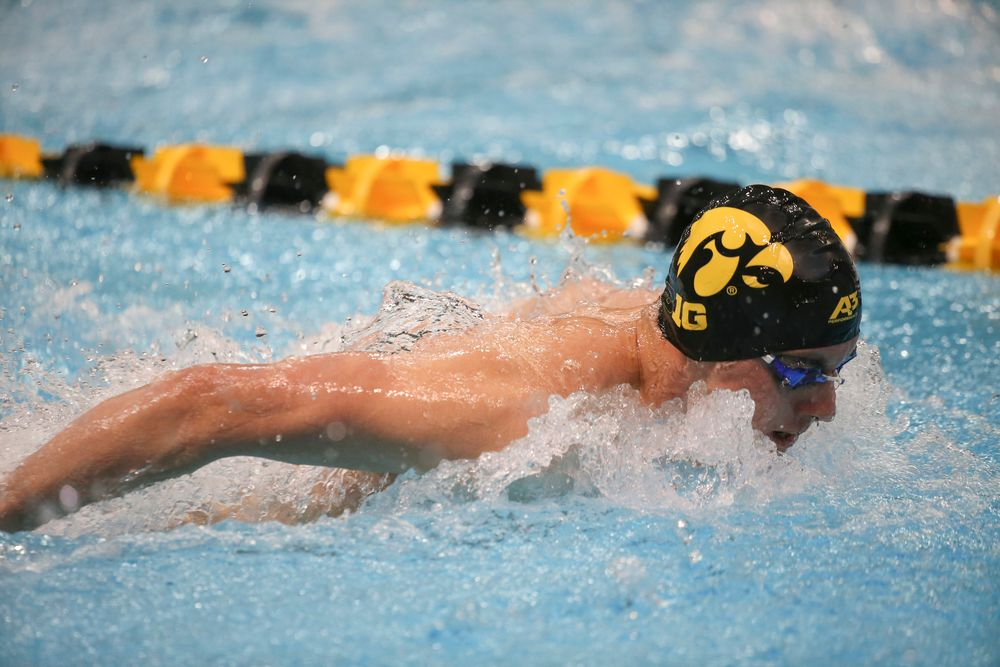 Iowa's Dolan Craine swims the 200-yard butterfly during the Iowa swimming and diving meet vs Notre Dame and Illinois on Saturday, January 11, 2020 at the Campus Recreation and Wellness Center. (Lily Smith/hawkeyesports.com)